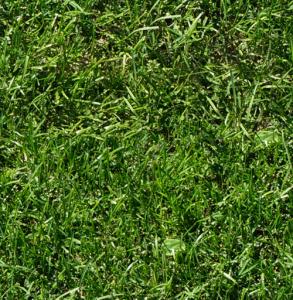 grass_tiled