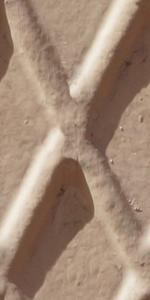 x_shape_tiled
