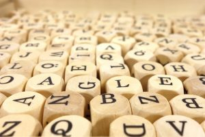 Why do we have human language?