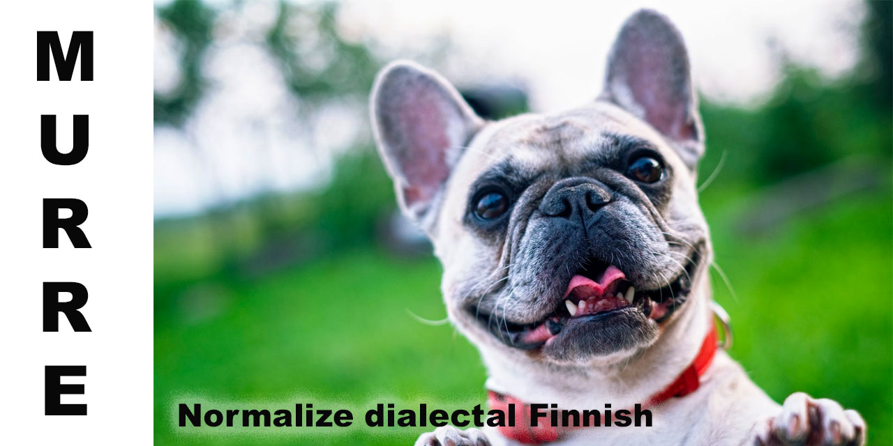 Process dialectal Finnish in Python